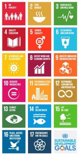vertical SDG